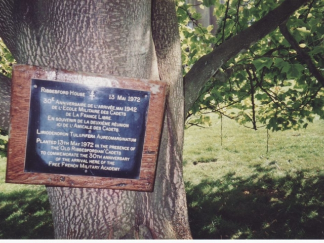 L'arbre a été planté en mai 1972, Trente ans après l'arrivée des Cadets à Ribbesford