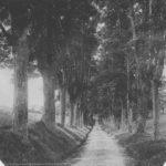 Les Cadets retrouvent le vieux chemin de Ribbesford